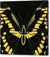 Flight Series 11 Yellow Tail Canvas Print