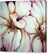 Flighty Floral Canvas Print
