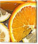 Floating Citrus Canvas Print