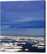 Floating Ice Canvas Print