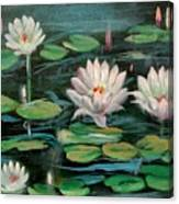 Floating Lillies Canvas Print