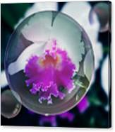 Floating Orchid Canvas Print