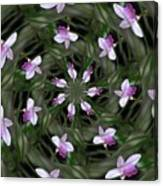 Floating Orchids Canvas Print
