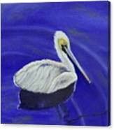 Floating Pelican Canvas Print
