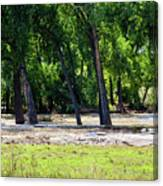 Flood Plain Canvas Print