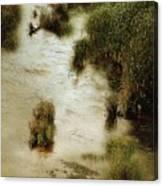 Flood Tide In The Salt Marsh Canvas Print