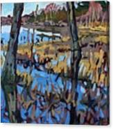 Flooded Land Canvas Print