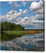 Flooded Low Country Rice Field Canvas Print