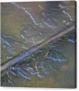 Flooded Rails Canvas Print