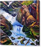Floodstage Canvas Print