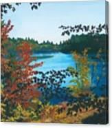 Floodwood Canvas Print