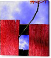 Flora And The Red Fence Canvas Print