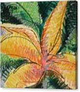 Flora Exotica 2 Canvas Print