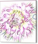 Floradoodle Canvas Print