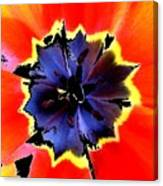 Floral 1229 Canvas Print
