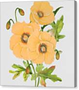 Floral Botanicals-jp3785 Canvas Print