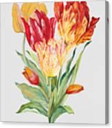 Floral Botanicals-jp3789 Canvas Print