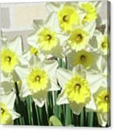 Floral Daffodils Garden Art Prints Floral Bouquet Baslee Troutman Canvas Print
