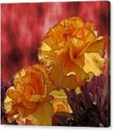 Floral Fiesta Canvas Print