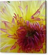 Floral Fine Art Dahlia Flower Yellow Red Prints Baslee Troutman Canvas Print