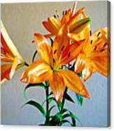 Floral Impression Canvas Print