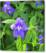 Floral Photo Canvas Print