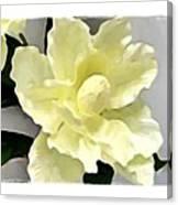 Floral Series I Canvas Print