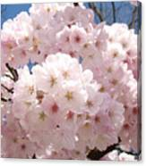 Floral Tree Blossoms Flowers Pink Art Baslee Troutman Canvas Print