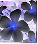 Florescent Flowers Canvas Print