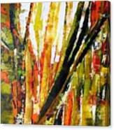 Floresta Vi Canvas Print