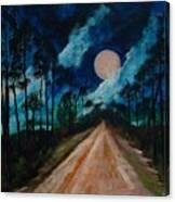 Florida Burn - Creative Tallahassee 2009 Canvas Print