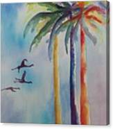 Florida Color Canvas Print