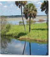 Florida Essence - The Myakka River Canvas Print