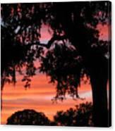 Florida Firesky Canvas Print