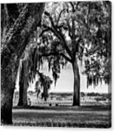 Florida Interior From Bok Gardens Canvas Print