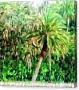 Florida Loop Canvas Print