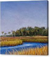 Florida Marsh In June Canvas Print