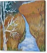 Florida Marshland Canvas Print