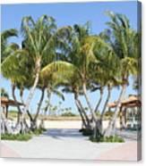 Florida Palms At Beach Canvas Print