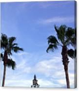Florida Queen Palm   Canvas Print