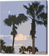 Florida Queen Palm Trees   Canvas Print