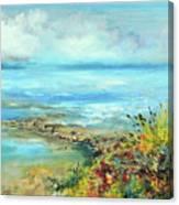 Florida Shore Canvas Print