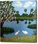 Florida Wetlands Canvas Print