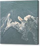 Flotsam Canvas Print