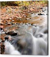 Flow In Sedona Canvas Print