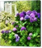 Flower - Hydrangea - Lovely Hydrangea  Canvas Print