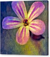 Flower Canvas Print