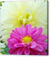 Flower Art Print White Pink Dahlia Floral Canvas Baslee Troutman Canvas Print