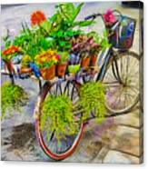Flower Bike Collection Canvas Print