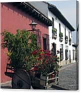 Flower Cart Old Antigua Canvas Print